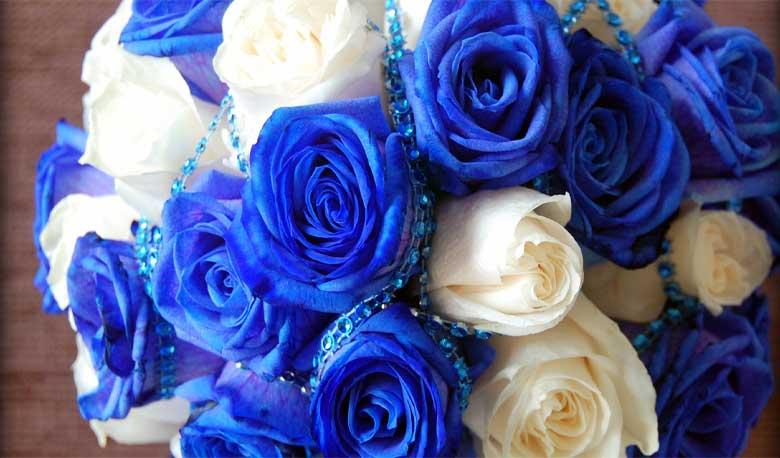 Maxine 4 Flowers